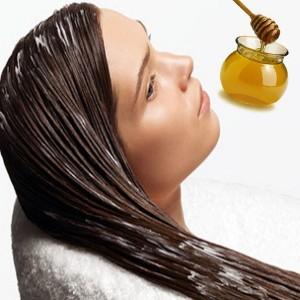 Shea Butter Conditioner, Rosemary Rinse, Chamomile Shampoo, Aloe vera Hair Spray