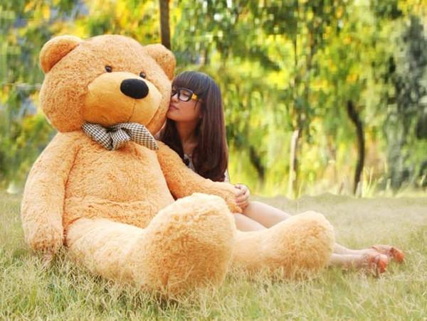Surprise Teddy