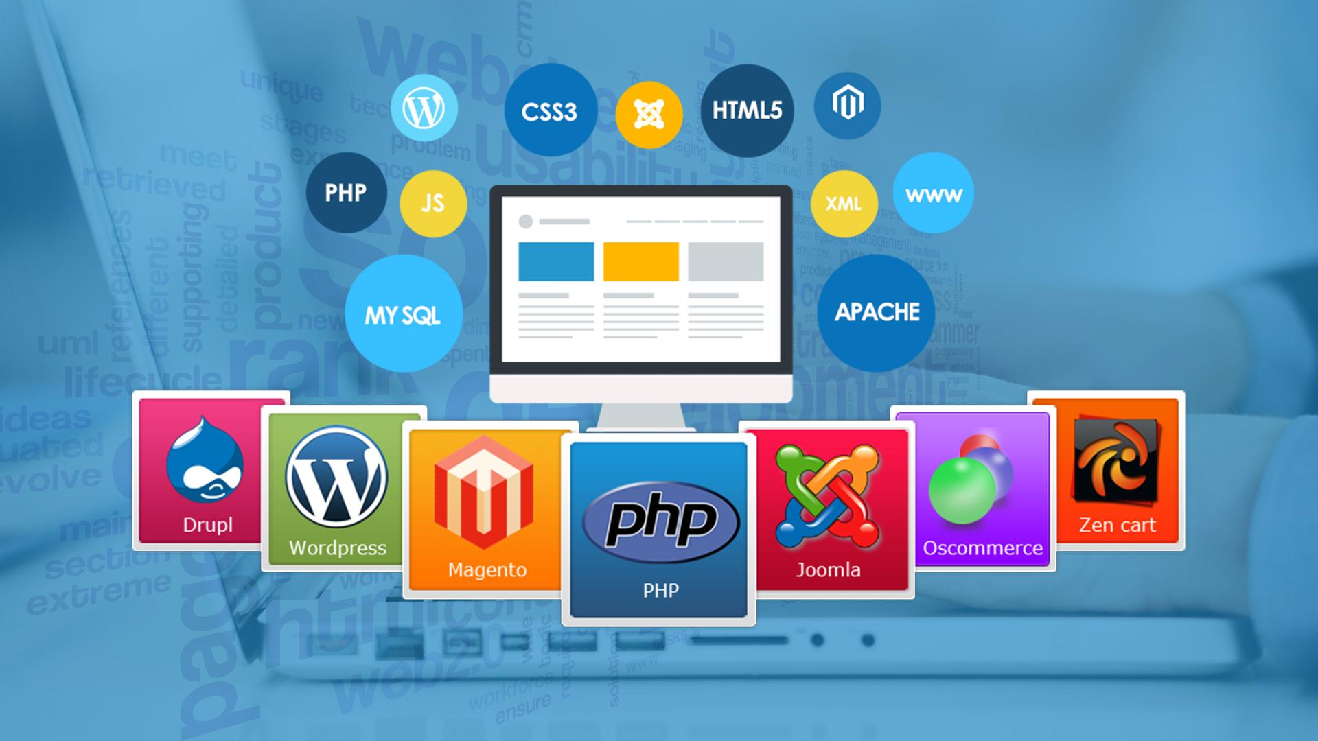 Local Web Development Services